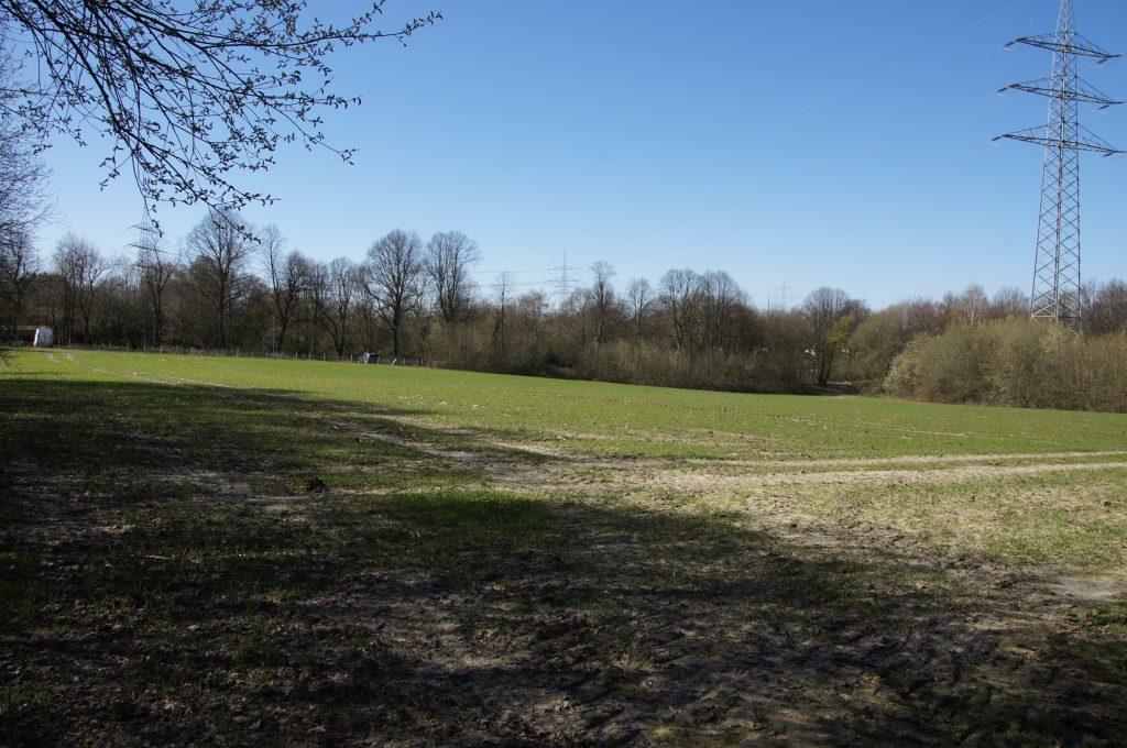 Ansicht des Baugrundstückes am Schlosspark Bochum