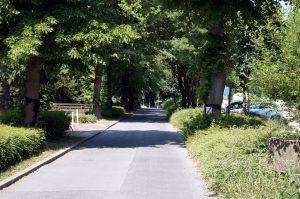 Die Schloßstraße am Schlosspark Bochum